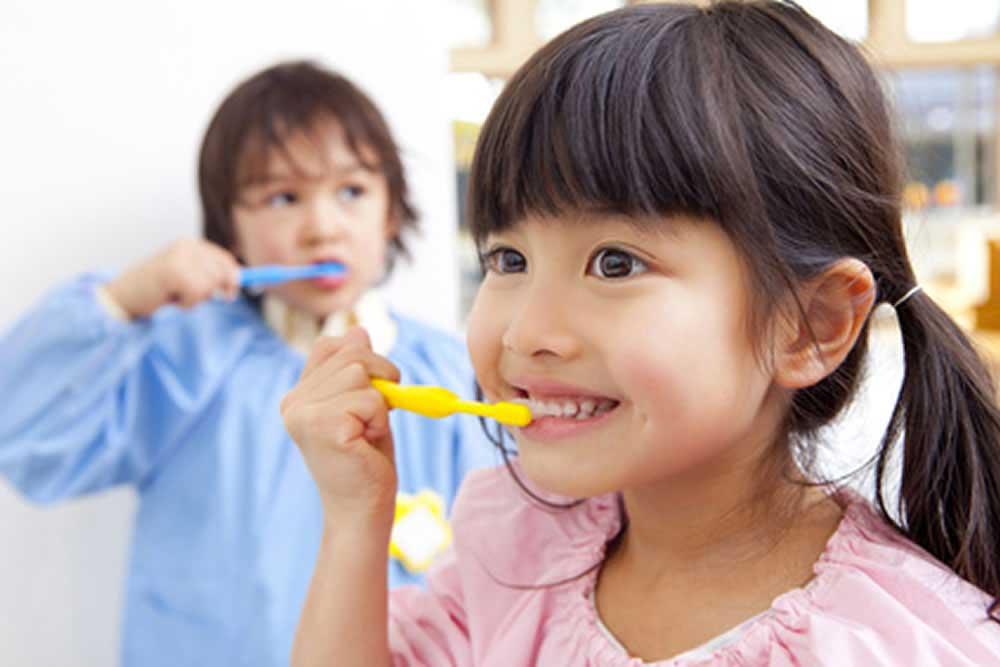 歯磨きの指導